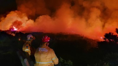 Firefighters at the scene of the blaze at North Head overnight.