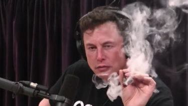 The alpha male opposite: Telstra billionaire Elon Musk's during his potcast.