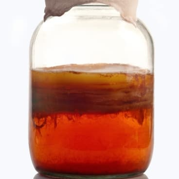 A jar of kombucha tea during the fermentation process.