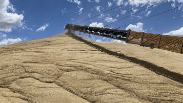 Bulk grain handler GrainCorp has already received 3.9 million tonnes of grain this harvest, about the same as for the entire drought-hit harvest last year.
