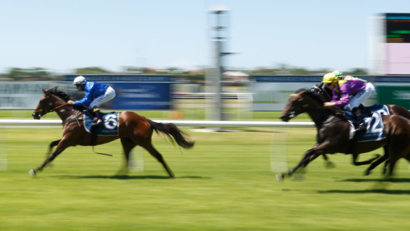 Race-by-race guide and tips for Newcastle on Monday