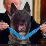 Medal of Honour winner edited out, replaced by dog in tweet sent by Trump