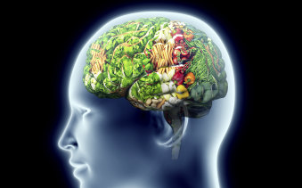 Veganism - good for the brain or not?