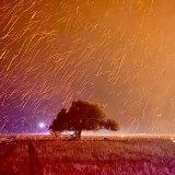Angin menyebabkan titik api menyala dalam jarak 100 meter dari titik api.