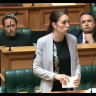 NZ spies raise foreign meddling concerns