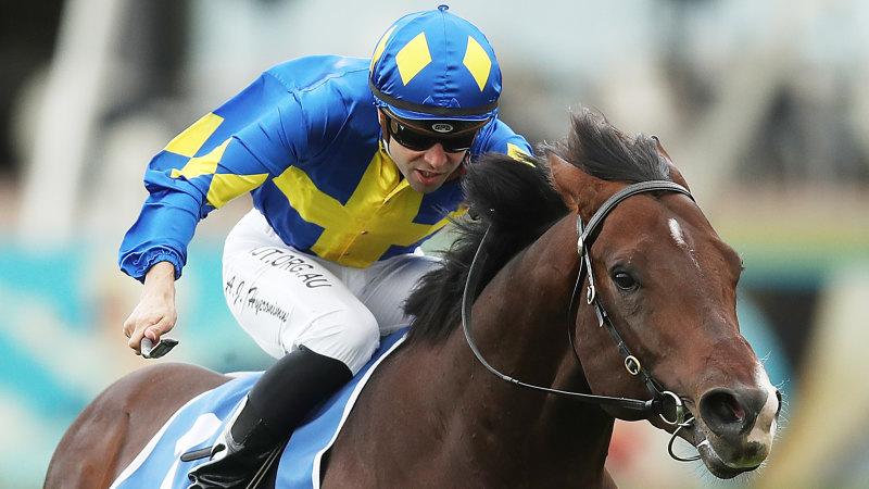 Inside Running: Colt chases passage into Stradbroke