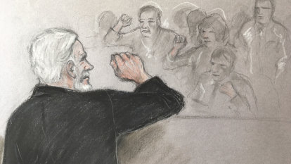 Julian Assange interrupts extradition hearing again