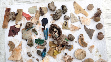 Plastic fragments recovered from the stomach of just one bird on the island.