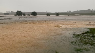 Mr Orr's farm covered in water during Tuesday's heavy rain near Murrumbateman.