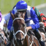 'In another world': Winx banishes doubt over risk of farewell campaign