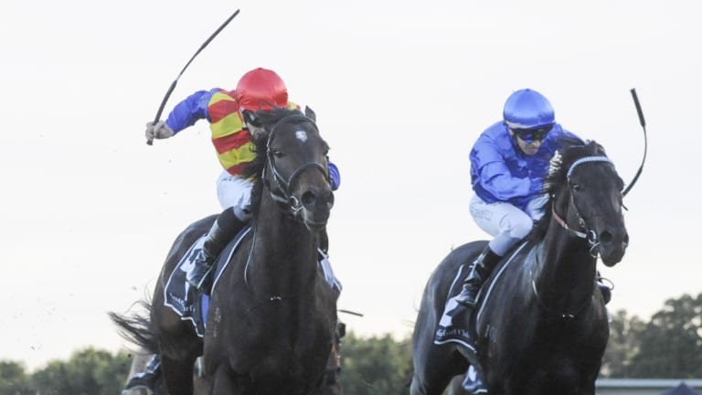 Star power: Pierata holds off Kementari to win the Missile Stakes at Randwick on Saturday.