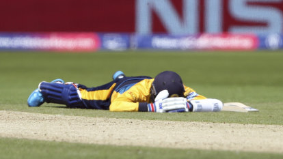 Swarm of bees stops play, sends World Cup cricketers diving for cover