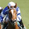 Collett has laugh on his critics with winning ride on Gytrash