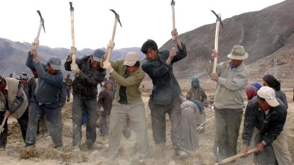 China forces 500,000 Tibetans into labour camps