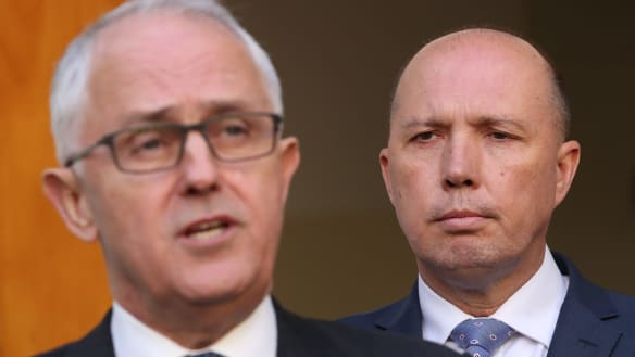 Senior cabinet ministers move to quell talk of Peter Dutton leadership challenge