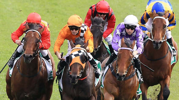 Race-by-race guide and tips for Cessnock on Wednesday