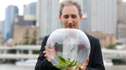 Brisbane reaches for the stars with World Science Festival 2019 lineup