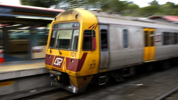 Cow on tracks forces several train cancellations