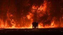 Firefighter overwhelmed by flames at bushfire in Orangeville on December 5.