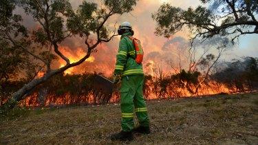 A fuel reduction burn at Warneet, Western Port Bay.