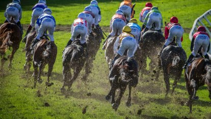 Six months in prison and $11,000 fine: racing's new inquiry threat