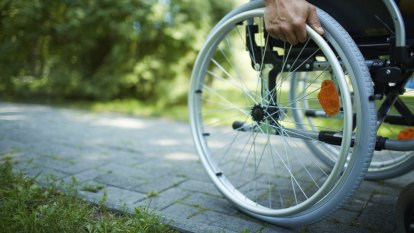 Secret documents show department inserted chapter into NDIS review