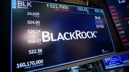 BlackRock sees 'Rip Van Winkle' risks as pandemic hurts globalisation