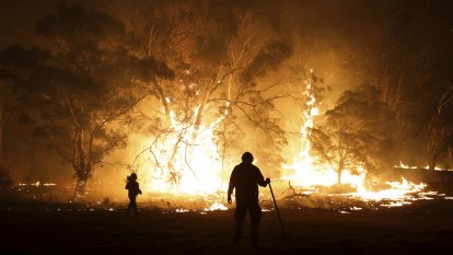 Cyber thieves target charity bushfire grants
