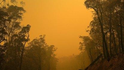 Frantic final moments of South Coast resident fighting bushfire 'beast'