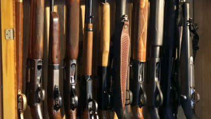 'Gaps in the system': Move to overhaul paper-based gun licensing system