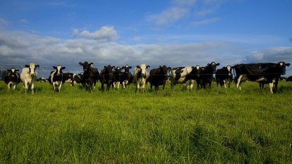 Farmers want net zero emissions, going further than Morrison government