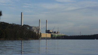 Vales Point says pollution breaches reflect dirty Lake Macquarie water