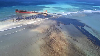 'Biodiversity in peril' as Mauritius scrambles to counter oil spill