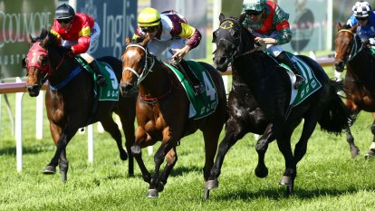 Pearl Roan and Tango Stepz to resume rivalry at Scone