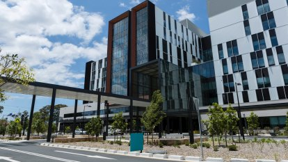 No more public-private hospitals for NSW, parliamentary inquiry recommends