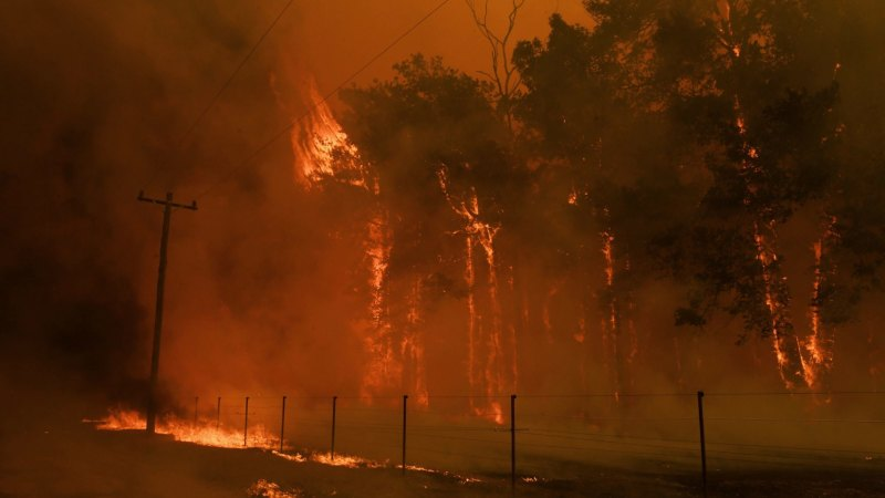 NSW fire conditions to worsen as severe heatwave set to hit Australia