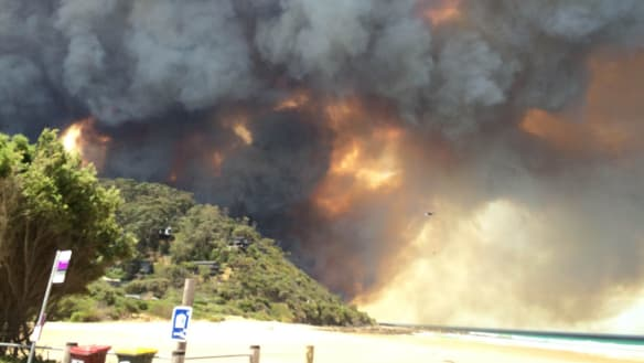 Suncorp's Wye River bushfire shame revealed