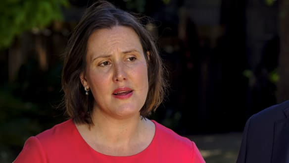 Kelly O'Dwyer announces her departure form politics.