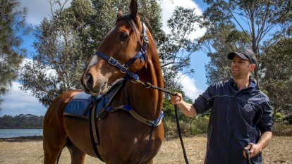 Wet Randwick helps Dale and Blowes Swoop on Sydney