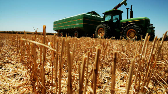 Australia cuts wheat harvest forecast to 10-year low on drought