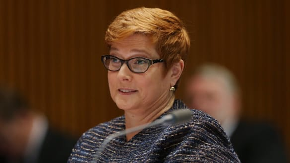 Foreign Minister Marise Payne to visit China in bid to end year-long dispute