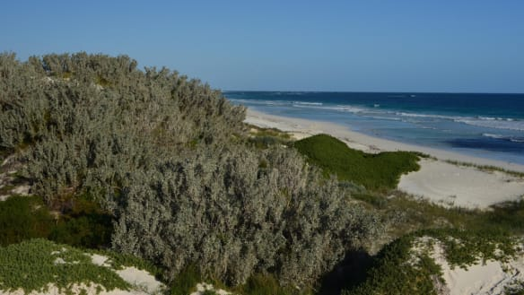 Locals fear power plant risks making Lancelin 'Kwinana of the north'