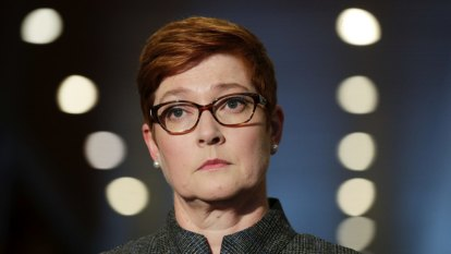 Cyber attacks could help trigger a war, says Marise Payne