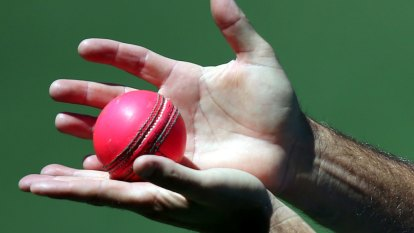 Concerns raised over 'soft' pink ball ahead of Perth day-night Test