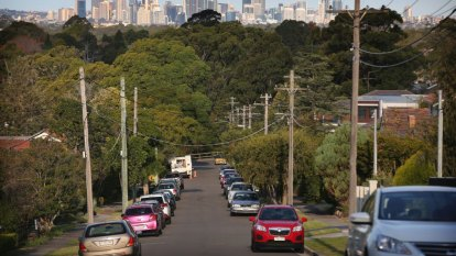 Call for Sydney to be managed as an 'urban forest'