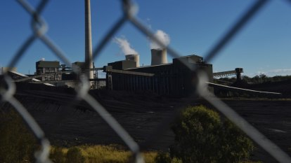 Big power companies snub government underwriting for new coal plants