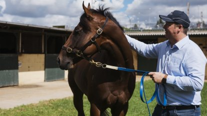 Warwick Farm trainers spark push for new stables amid safety fears