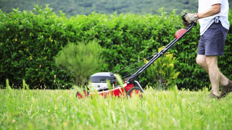 New study urges gardeners to pass on the grass