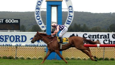 They're off: Gosford hosts an eight-race card on Thursday.
