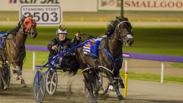 Record hunter: Lazarus wins the Inter Dominion at Gloucester Park last year.